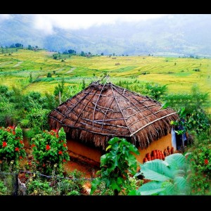 Munnar Hut