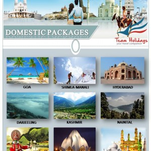 DOMESTIC PACKAGES