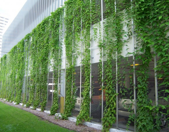 Green Screens